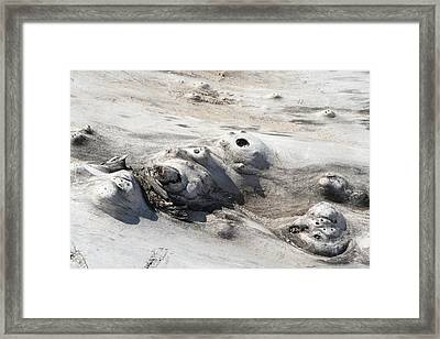 Framed Print featuring the photograph Beach Driftwood II by Peg Toliver