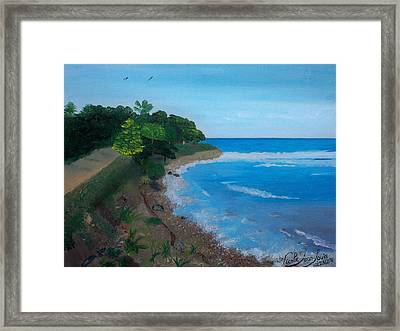Beach Erosion Framed Print