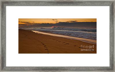 Beach Footsteps At Dawn Framed Print by John Buxton