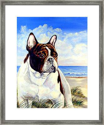 Beach Frenchie - French Bulldog Framed Print by Lyn Cook