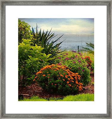Framed Print featuring the photograph Beach Garden by Mary Timman