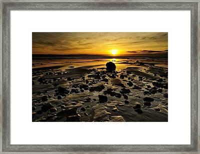 Beach Morning Glory Framed Print by Svetlana Sewell