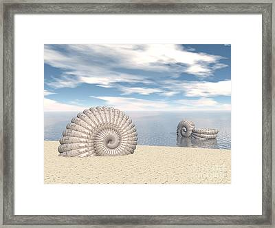 Framed Print featuring the digital art Beach Of Shells by Phil Perkins
