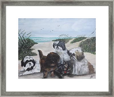 Beach Pals Framed Print by Kim Selig