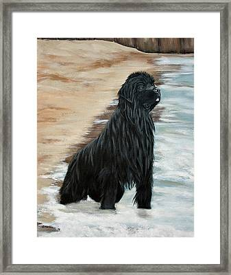 Beach Patrol Framed Print