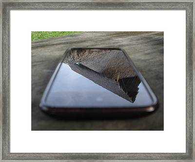 Beach Rancho Reflection  Framed Print by Rosvin Des Bouillons