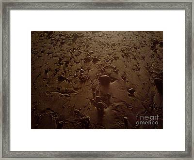 Beach Stones At Night Framed Print by Wendy Marelli
