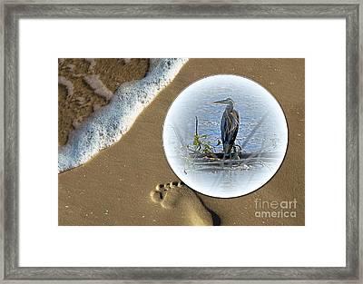 Beached Heron Framed Print