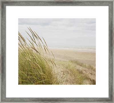 Beachscape 8 Framed Print by Ben Richardson