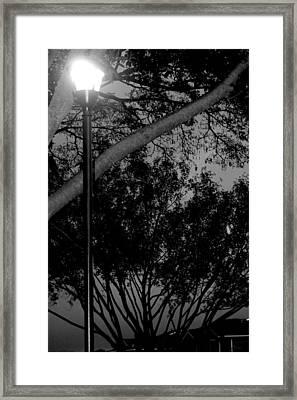 Beacon Home Framed Print by Elizabeth  Doran