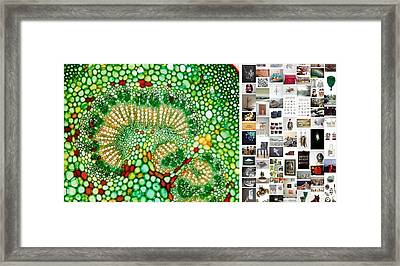 Beads Of Green Framed Print by Holley Jacobs