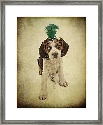 Beagle Puppy Flapper  Framed Print by Susan Schmitz
