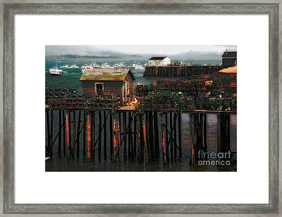 Beals Island Framed Print by Alana Ranney