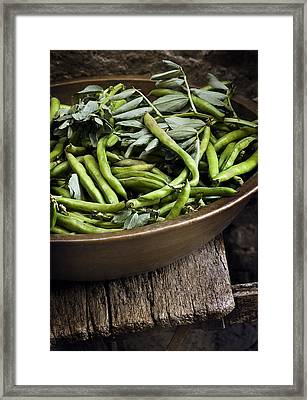 Beans Framed Print by Bruno Ehrs