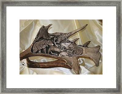 Bear And Wolf In The Wilderness Framed Print by Banucu Ioan