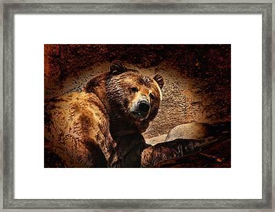 Bear Artistic Framed Print by Karol Livote