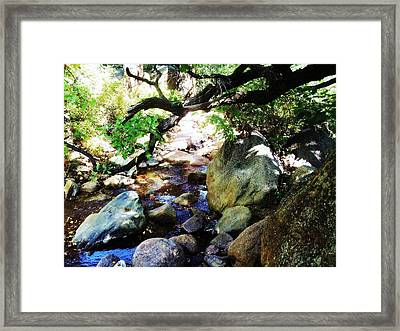 Framed Print featuring the photograph Bear Creek Branch by Clarice  Lakota