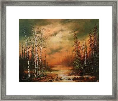 Bear Creek Framed Print by Tom Shropshire
