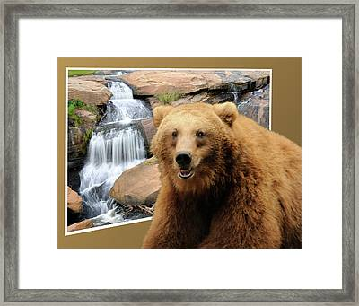 Bear Out Of Frame Framed Print