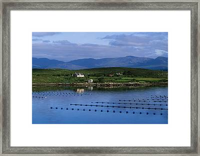 Beara, Co Cork, Ireland Mussel Farm Framed Print by The Irish Image Collection