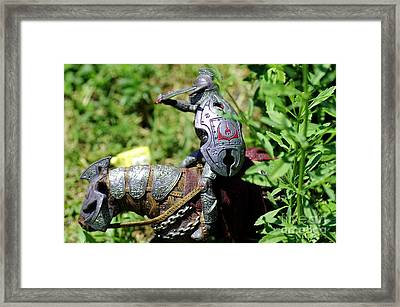 Beastslayer Framed Print