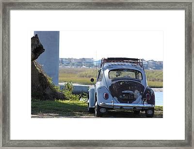 Beatle Framed Print
