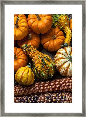 Beautiful Autumn Framed Print by Garry Gay