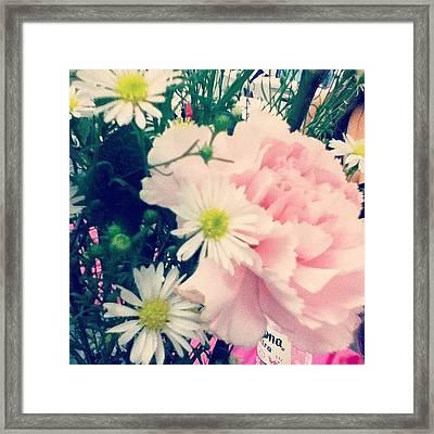 #beautiful #flower #instanature Framed Print