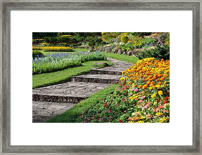 Beautiful Flowers In Park Framed Print by Atiketta Sangasaeng