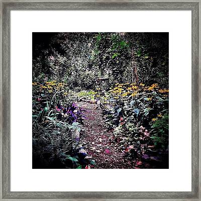 Beautiful Garden Path - New York City Framed Print by Vivienne Gucwa