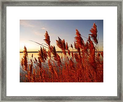 Beautiful Morning ... Framed Print by Juergen Weiss