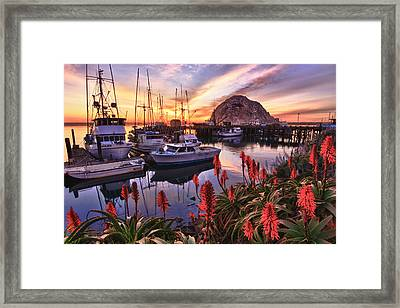 Beautiful Morro Bay Framed Print