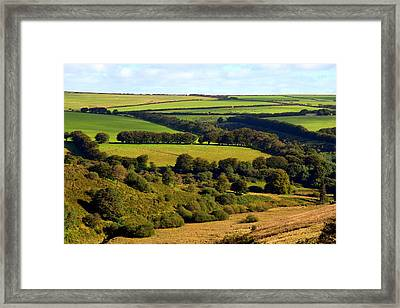 Beautiful Somerset Framed Print by Carla Parris