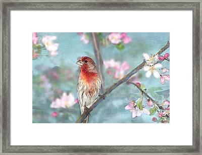 Beautiful Spring Framed Print by Betty LaRue