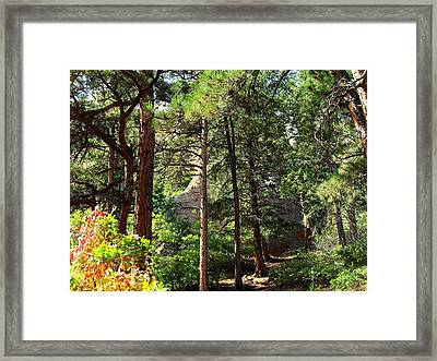 Framed Print featuring the photograph Beautiful Trail North Canyon by Clarice  Lakota