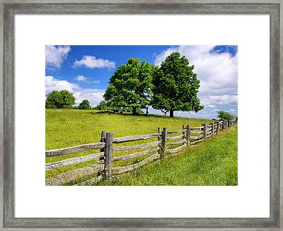Beautiful Virginia Pasture Framed Print by Lori Coleman