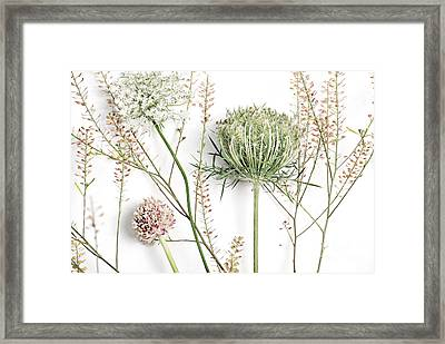Beautiful Weeds Framed Print