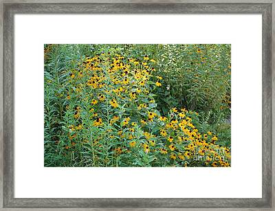 Beautifully Busy Framed Print