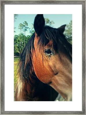 Beauty Framed Print by Chasity Johnson