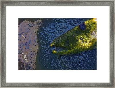 Beauty In Death- Abstract Framed Print