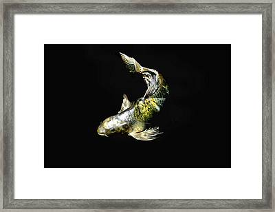 Beauty Is Only Scale Deep Framed Print