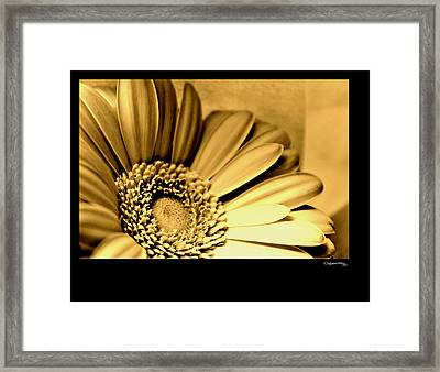 Beauty More Precious Than Gold Framed Print by Xoanxo Cespon