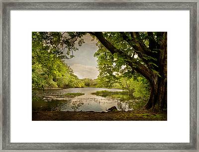 Beauty Of Ireland Framed Print by Cheryl Davis