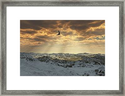 Beauty Of Winter Framed Print by Julie Grace