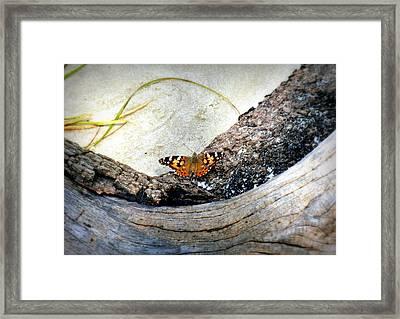 Beauty On The Beach Framed Print by Karen Wiles