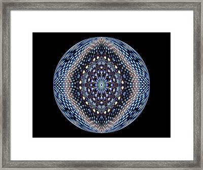 Beauty Framed Print by Yvette Pichette