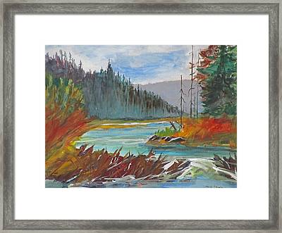 Beaver Dam Framed Print by Heidi Patricio-Nadon