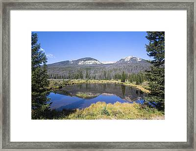 Beaver Pond At Rocky Mountain National Park Framed Print by Ellie Teramoto