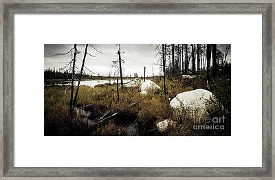 Beaver Pond Framed Print