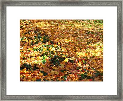 Bed Of Colors Framed Print by Lee Yang